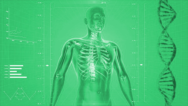 wirbelsaeulenchiropraktik